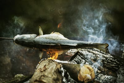 Whole fish grilled on a barbecue.