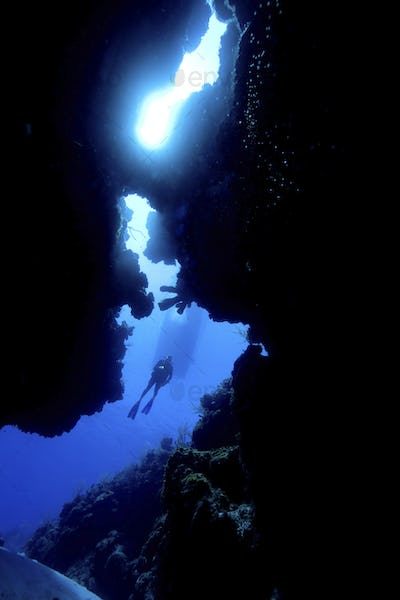 Looking up through opening in the coral reef at Bloody Bay, Little Cayman,Looking up through opening