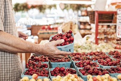 Close up of person holding punnet with fresh red cherries at a fruit and vegetable market.