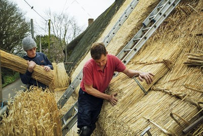Two men thatching a roof, layering yelms of straw.