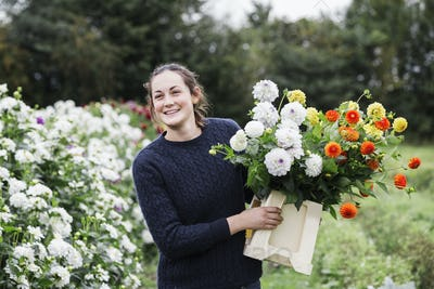 A woman working in an organic flower nursery, cutting flowers for flower arrangements and commercial