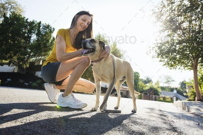 Senior woman wearing shorts, kneeling in the street, stroking a dog.