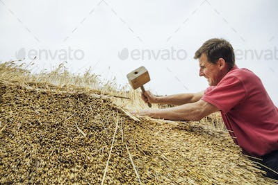 Man thatching a roof, using a wooden mallet to fasten the straw.