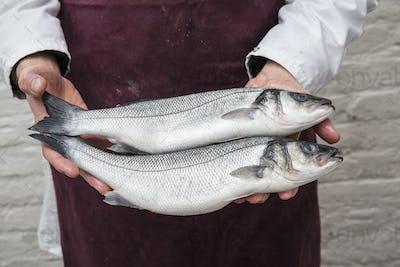 Close up of fishmonger wearing apron holding two fresh fish.