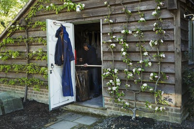 A garden shed workshop with plants trained up the outside, flowering. View through the open door of