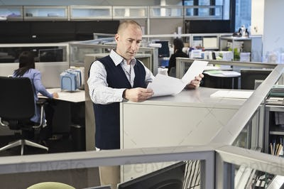 Caucasian male going over paperwork in office cubicles.