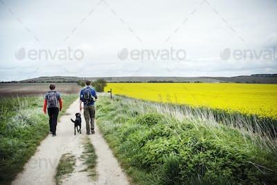 Walking along the ancient Ridgeway path through the county of Berkshire.