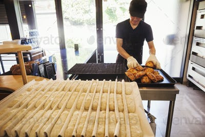 Man working in a bakery, wearing oven gloves, placing freshly baked rolls on a tray.