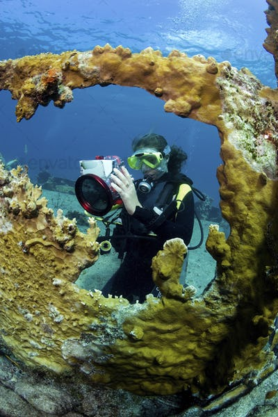 Teenager takes underwater pictures while scuba diving on a shipwreck.