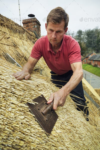 Man thatching a roof, standing on a ladder, dressing the thatch using a leggett.