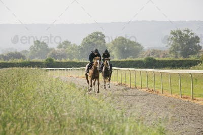 Two horses and riders on a gallops path, racing against each other in a training exercise. Racehorse