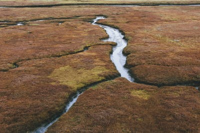 Elevated view of marsh and tidelands at dusk, Drakes Estero, Point Reyes National Seashore,