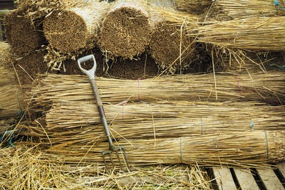 Pitchfork leaning against bundles of straw used for thatching a roof.