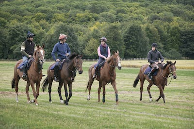 A string or group of riders on thoroughbred horses riding along a path. Racehorces in training.