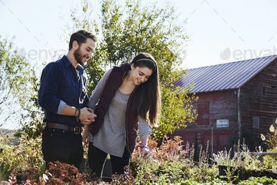 A young man and woman looking at plants on a display at a garden centre.