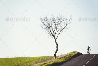 A cyclist riding along a country road on a clear sunny winter day.  On the brow of a hill, rear