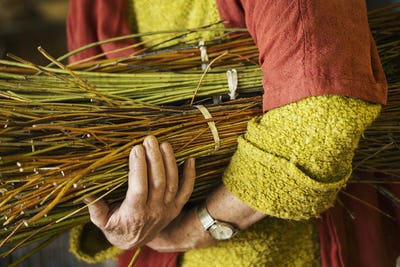 Close up of woman holding a willow bundle in a basket weaver's workshop.