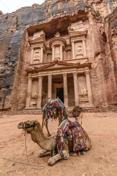 Exterior view of the rock-cut architecture of Al Khazneh or The Treasury at Petra, Jordan, camels in