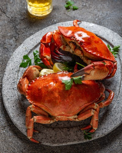 Crab on white plate with beer, lemon and herbs on slate background