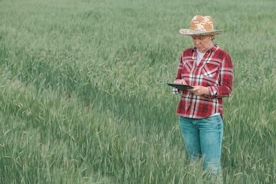 Female farmer agronomist using digital tablet in barley field