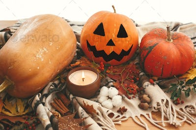 Happy Halloween. Jack o lantern and pumpkins with fall leaves