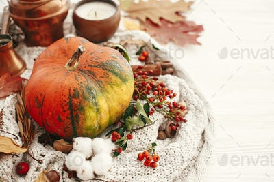 Hygge lifestyle, cozy autumn mood. Pumpkin and candle with berries