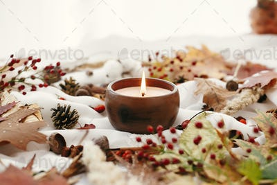 Candle with berries, fall leaves. Autumn mood. Hello autumn, cozy inspirational image.
