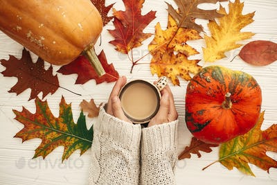 Autumn flat lay. Hands in knitted sweater holding coffee cup and pumpkins with fall leaves