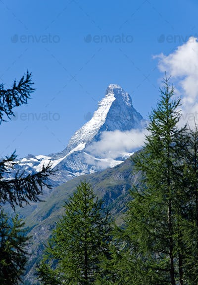 The Matterhorn behind some trees
