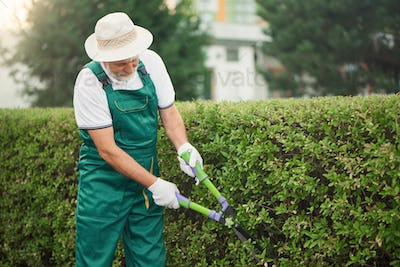 Man in hat cutting overgrown bushes
