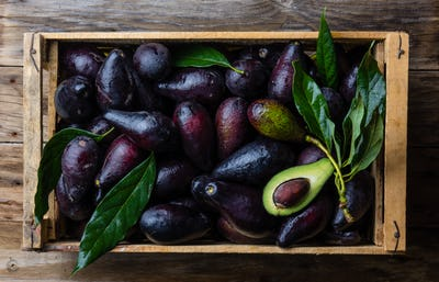 Box of fresh avocado with leaves. Harvest concept