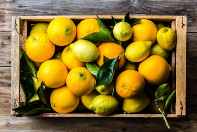 Box of fresh citrus lemon and orange with leaves. Top view