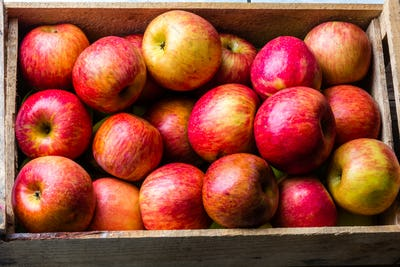 Full box of fresh red apples. top view, copy space. Harvest concept