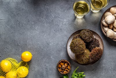 Pacific Sea urchins on gray background with lemon. cilantro and white wine. top view