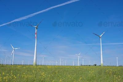 Modern wind wheels with a clear blue sky
