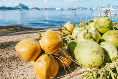 Fresh coconut fruits on the corong beach in El Nido, Palawan, Philippines