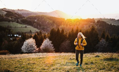 Front view of senior woman hiker walking outdoors in nature at sunset