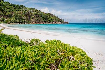 Beautiful Petite Anse beach at Mahe Island, Seychelles. Blue ocean lagoon and white sand tropical