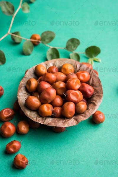 Indian Jujube / Ber / Berry / Ziziphus Mauritiana