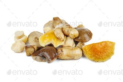 Pile of marinated birch bolete mushrooms isolated on a white background