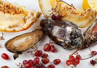 Rotten fruits on white background, Zero waste concept