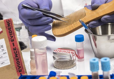 Specialized police take comb hair to take DNA from murder victim, conceptual image