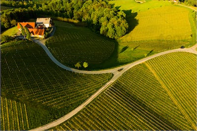South styria vineyards aerial panoram landscape, Grape hills view from wine road in spring