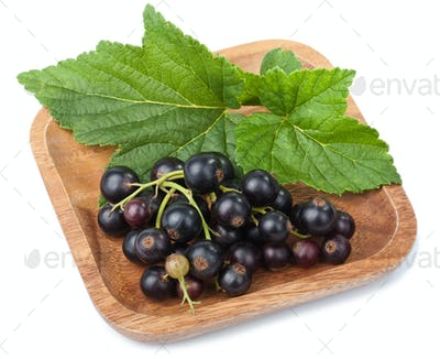 black currant in bowl isolated