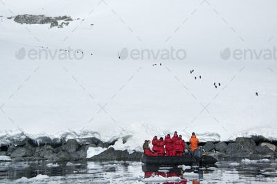 People in small inflatable zodiac rib boats approaching the shore around Cuverville Island