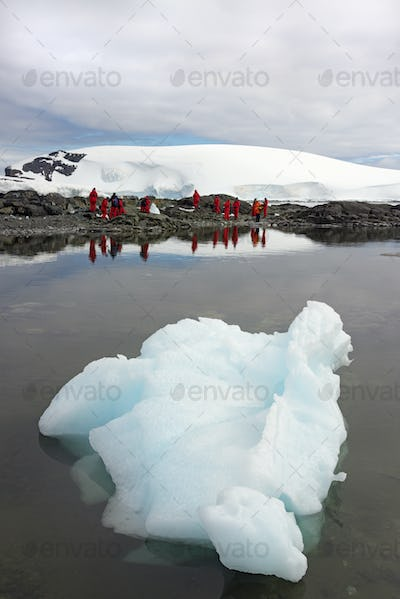 Travellers photographing the scenery and wildlife on an Antarctic island