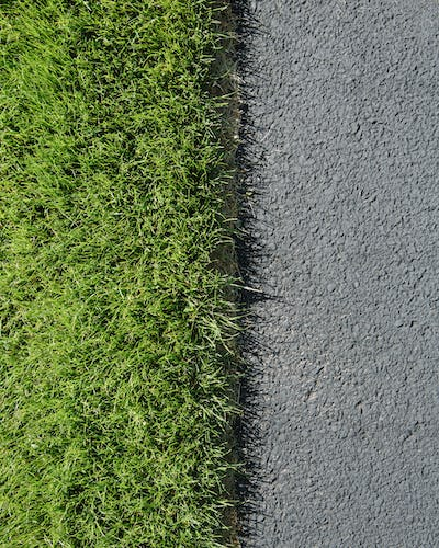 Detail of lush, green grass and sidewalk, near Quincy