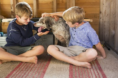 Two brothers playing with their dog.