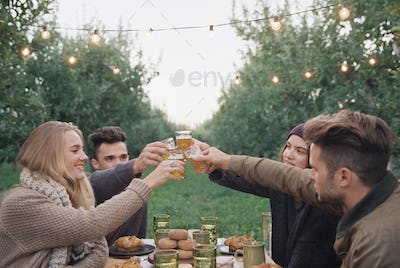 Apple orchard. Group of people toasting with a glass of cider, food and drink on a table.