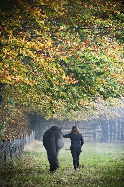A woman walking with a horse in an autumn meadow.